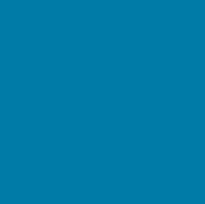 CHIG Logo